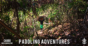 "Mail Magazine ""PADDLING ADVENTURES"""