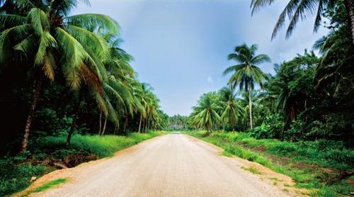 今年3回目のPapua New Guinea!